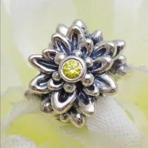 Retired Rare Pandora edelweiss bead 791176CZY